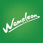 Wameleon-Karson-Consulting.jpg